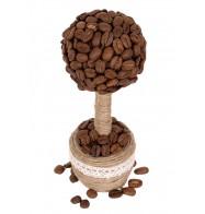 Кофейное дерево, маленькое (ручная работа)
